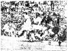 1964-12-07-santos-7-x-4-corinthians-10-gol-do-bazzani2