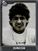 f_irineuparmegianijunior1985